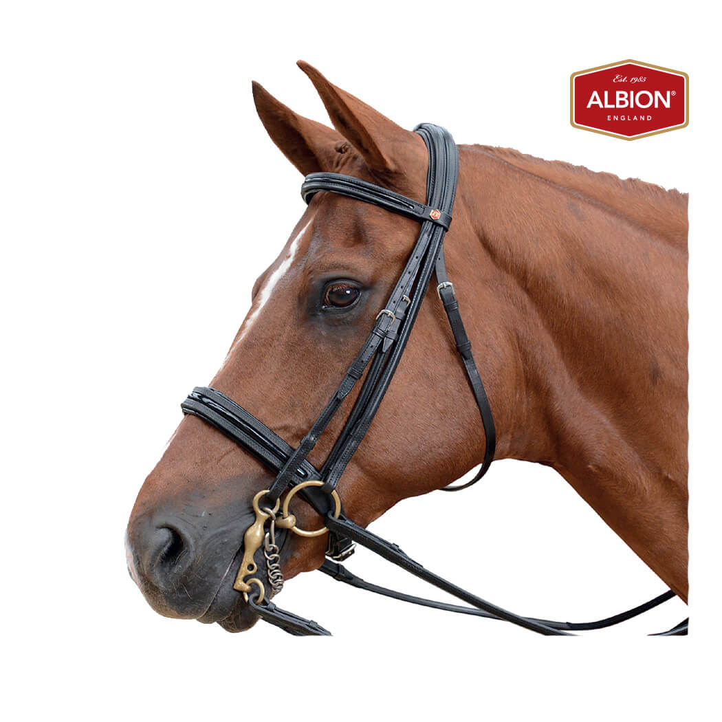Albion KB Super Weymouth Bridle