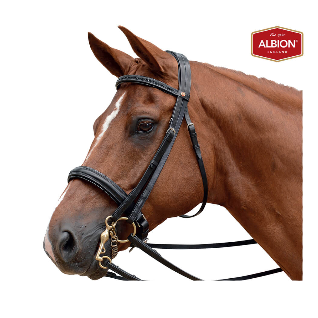 Albion KB Competition Weymouth Bridle