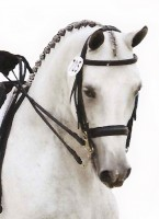 super weymouth bridle
