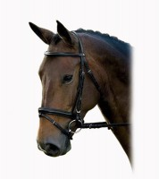 Dobert Original bridle