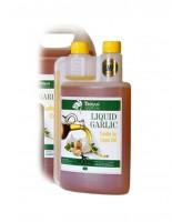 EE liquid garlic in corn oil