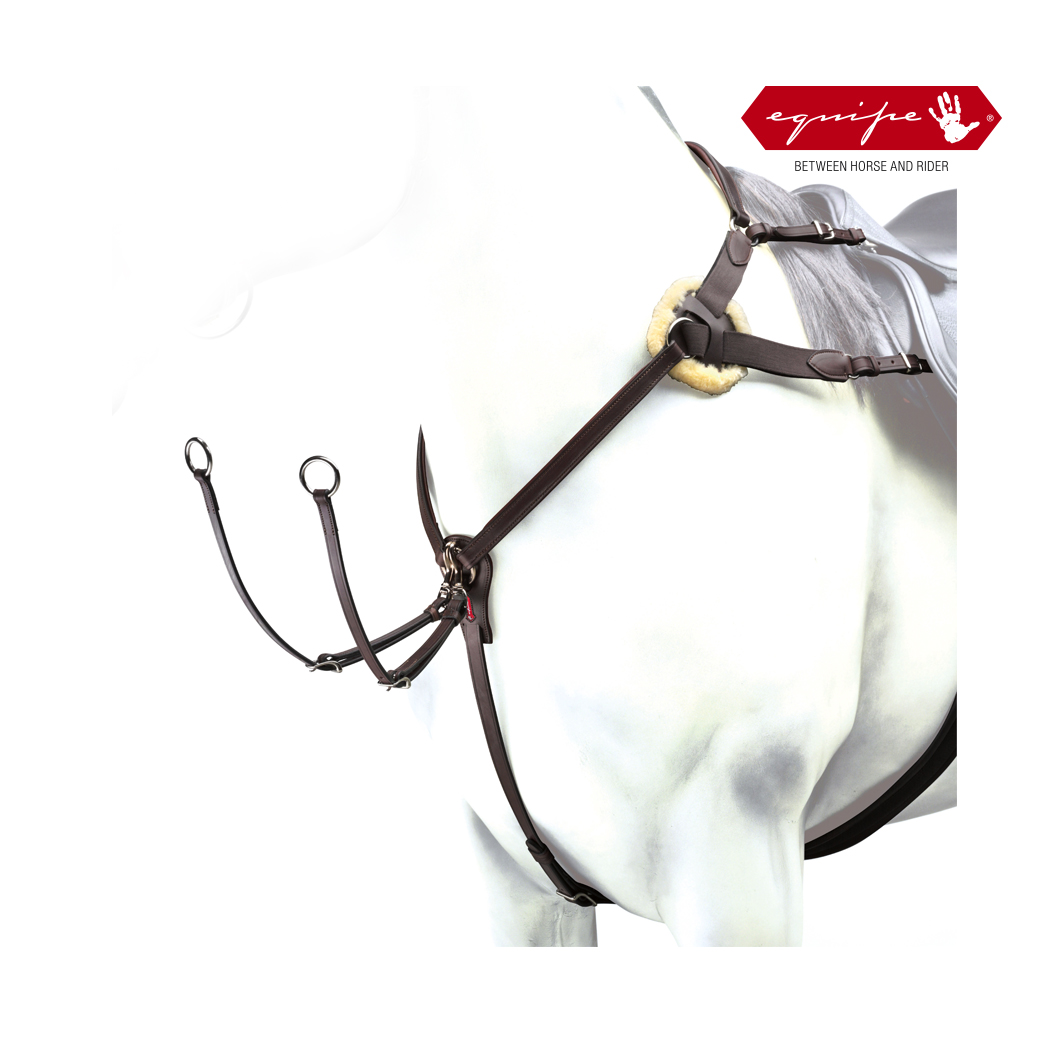 Equipe 5 Point Breastplate