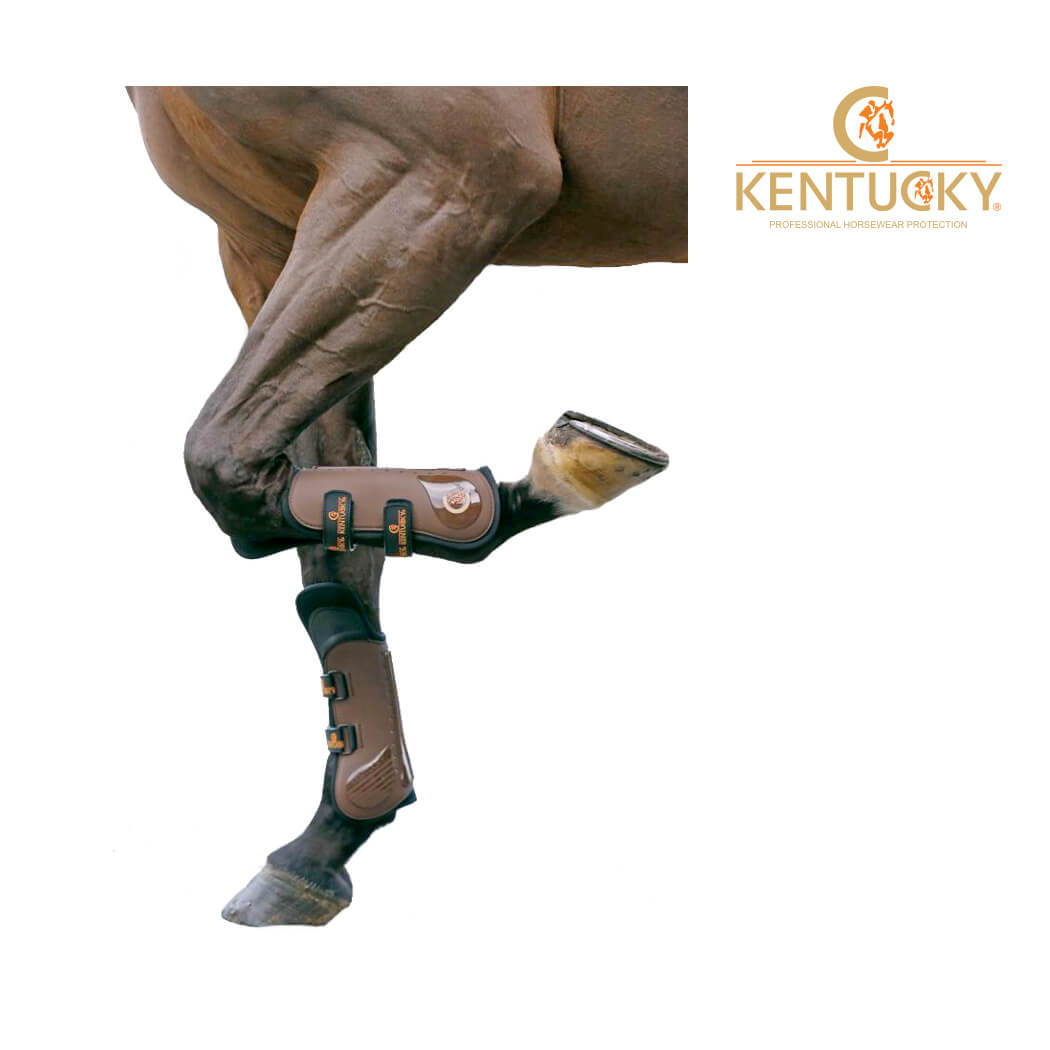 Kentucky Knee Tendon Boot